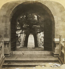 HC White Stereoview the Temple of Empress Ching An Tien, Peking, China 1901 3791