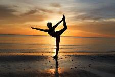 2017 8x10 PHOTO SUNSET DANCER BALLET MARCO ISLAND TIGERTAIL BEACH FLORIDA USA