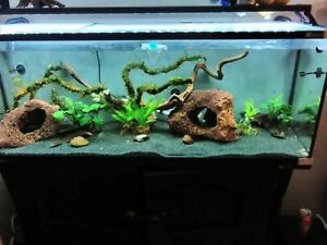 35w Aquarium External Filter Canister Fish Tank UV Light Water Pump Pond Media