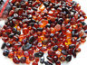 Holed Natural Polished  Baltic Amber Loose beads  (10gr)