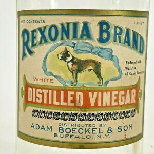 Antique Rexonia Brand Vinegar Glass Jug Jar Bottle Label, Pit bull, Terrior DOG