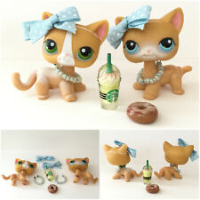 Littlest Pet Shop LOT 2 Duo Orange Shortair Cat #71 #72  Green Blue Eyes Access