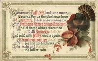 Thanksgiving - WINSCH Turkey & Leaves c1910 Postcard