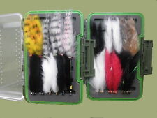 Coffret Truites Mouches, 24 Zonker motifs, taille 10, Clair Couvercle FLY FISHING BOX