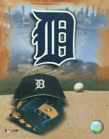 Detroit Tigers Photo Cap Glove Logo Stadium MLB Baseball