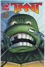 TMNT TEENAGE MUTANT NINJA TURTLES (2001) #28 - Back Issue