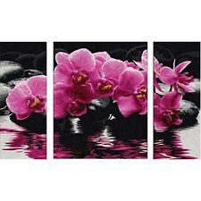 ORCHIDEEN Malen nach Zahlen Schipper Blüten Blumen Triptychon 50x80cm Stillleben