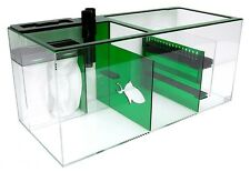 """Trigger Systems Sump Refugium Emerald Green 34"""" - Everyday Free Shipping"""