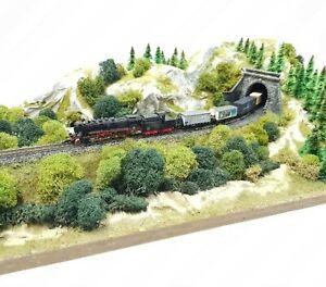 Märklin miniclub Spur Z Schaukasten / Diorama mit Haube - 50 x 30 cm