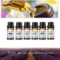 Essential Oil Gift Set Sampler Kit 6 - 10 ml 100% Pure Therapeutic Grade Lot Z