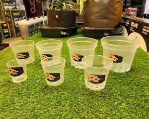 Orchid Pots - Growth Technology - Orchid Pots All Sizes - 9/12/13/15/17/19/21cm
