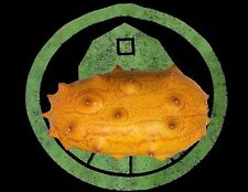 10+ Kiwano Melon (Horned Melon) seeds,