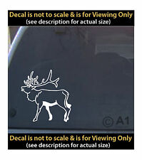 elk hunting rack 6 inch decal 4 car truck home laptop fun more HNT5_34