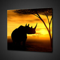 THE RHINO AFRICAN SUNSET BOX MOUNTED CANVAS PRINT WALL ART PICTURE PHOTO