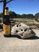 Medium Natural Texas Holey Honeycomb Limestone Cave Rock Aquarium Terrarium