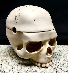 Human Skull Resin Ashtray Stash Pot Hidden Treasures Home Decor skeleton