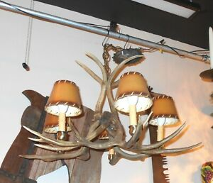 "Vintage Authentic 5 Bulb Deer Antler Chandelier 30"" Diameter"