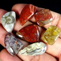 Natural Crazy Lace Agate Lot Mix Cabochon Untreated Loose Gemstone DC40