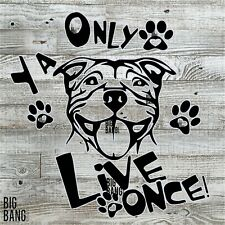 Staffordshire Bull Terrier American Bully Decal Sticker Mom Dad Van Yolo Funny