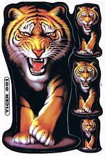 Aufkleber Löwe Lion Tiger von vorn  ca: A4 Format