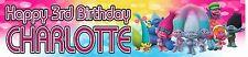 Personalised Trolls Birthday Banners - Buy 2 Get 1