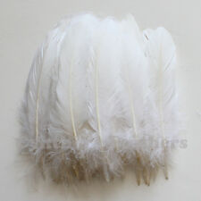 Turkey Feathers, White Turkey Round Quill Feathers 6-8 inches 50 pcs