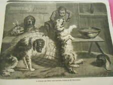 Gravure 1863 - Le singe dentiste extrait les dents sans douleur au chien