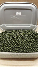 6mm Soft Rubber Shock Impact Weedy Green Beads.Chod,Hair Rigs etc + Free Gift.