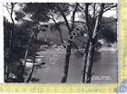 Cartolina - Postcard - Paraggi - Panorama dalla pineta - anni '50