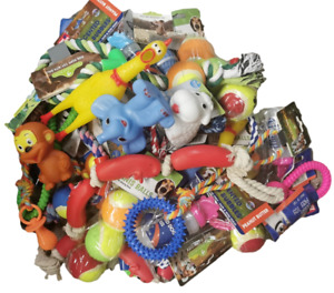 Assorted Dog Puppy Toys Mixed Job Lot of balls rope toys squeaky toys ect