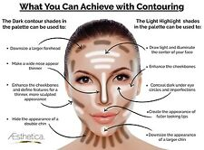 Cosmetics Contour and Highlighting Powder Foundation Palette
