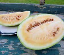 Sweet Siberian Wassermelone 10+ Samen - Saatgut - Gemüsesamen