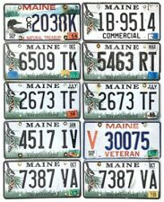 *99 CENT SALE*  Maine Chickadee License Plate LOT OF 10 Craft Grade + Optionals