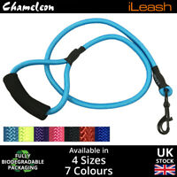 Strong Nylon Rope Dog Puppy Pet Lead Leash top quality