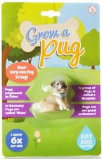 Grow A Pug Novelty Childrens Gift Brand New Novelty Gift Toy Just Add Water