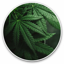 More details for 2 x vinyl stickers 25cm - the marijuana plant cannabis plant cool gift #16564