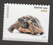US 5113 Pets Tortoises forever single MNH 2016
