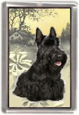 Scottish Terrier Fridge Magnet No 2 by Starprint