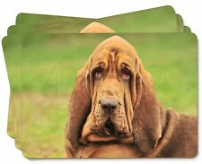 More details for blood hound dog picture placemats in gift box, ad-bh7p