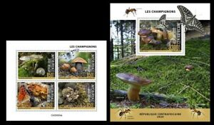 Central Africa. 2020 Mushrooms.  (504)