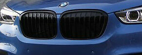 BMW 2016-2019 F48 F49 X1 OEM M Performance Gloss Black Front Grille Pair New
