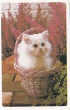 Vintage/Playing/Swap card Blank back White Kitten in basket white borders