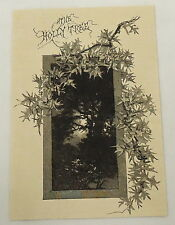1887 magazine engraving ~ SPOOKY HOLLY TREE
