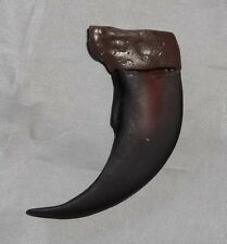 Grizzly Bear Replica Claw - Mountain Man - Museum - * NEW * Reproduction