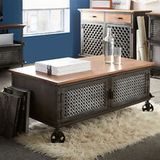 Coffee Table with 2 Doors made from Iron & Wood Indian Furniture Eva Range EV04