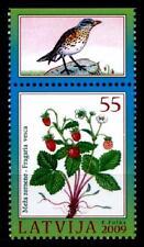 Beeren. Walderdbeere. Vogel. 1W. Rand(5). Lettland 2009