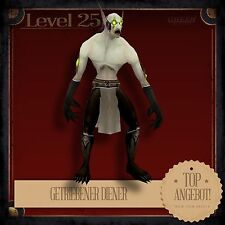 » Getriebener Diener   Wretched Servant   World of Warcraft   Haustier L25 «