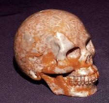Naturgetreuer Edelsteinschädel Skull, Sprotten Fossil 108,2g 53x43x36mm