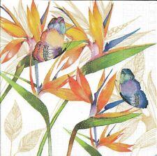 Lot de 2 Serviettes en papier Oiseau de Paradis Decoupage Collage Decopatch