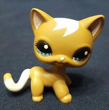 RARE Littlest Pet Shop LPS Cat #1170 Short Hair Brown Curl Mocha Tan Blue Eyes